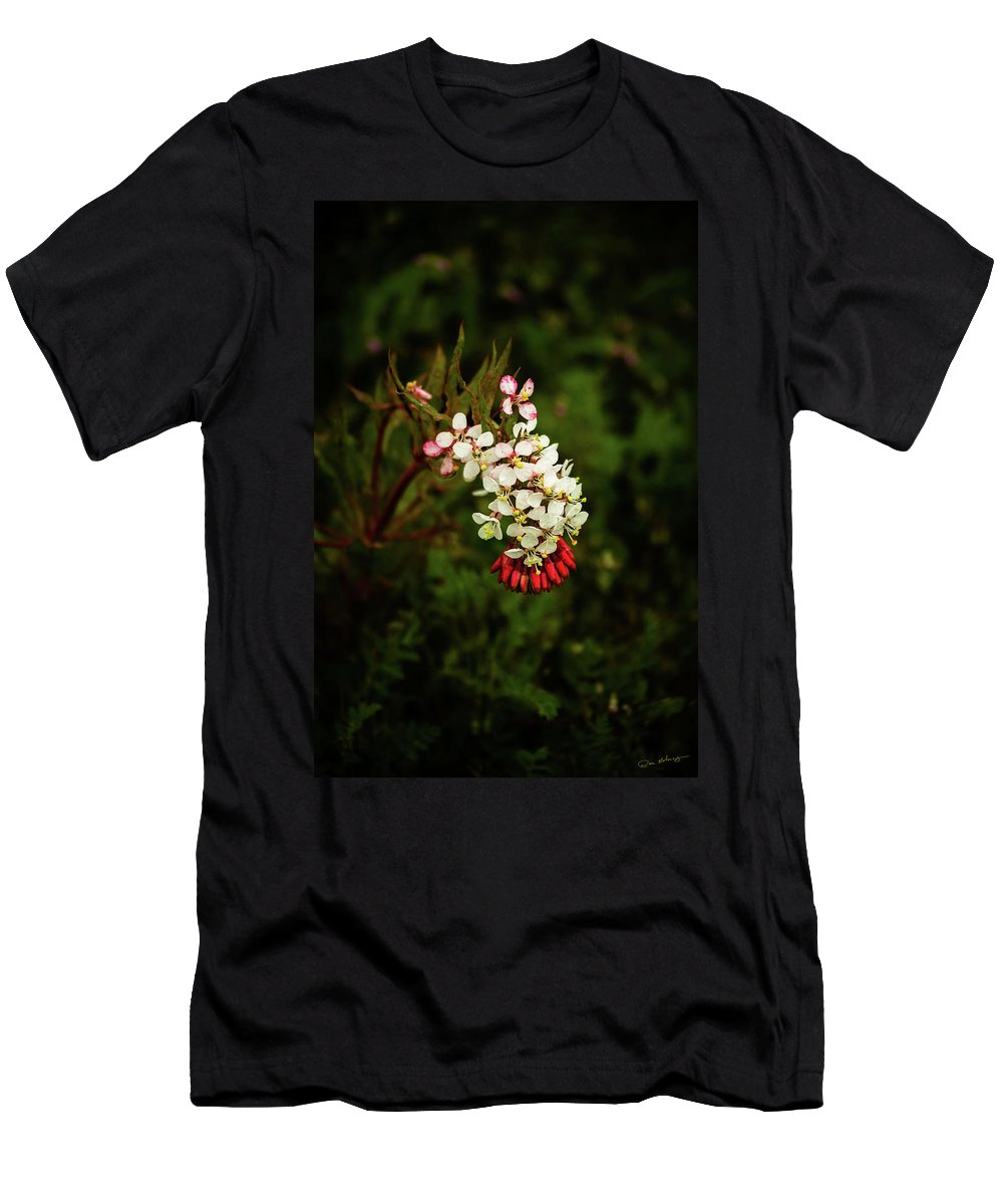 Booth's Desert Primrose Men's T-Shirt (Athletic Fit) featuring the photograph Hillside Surprise by Dan Holmes