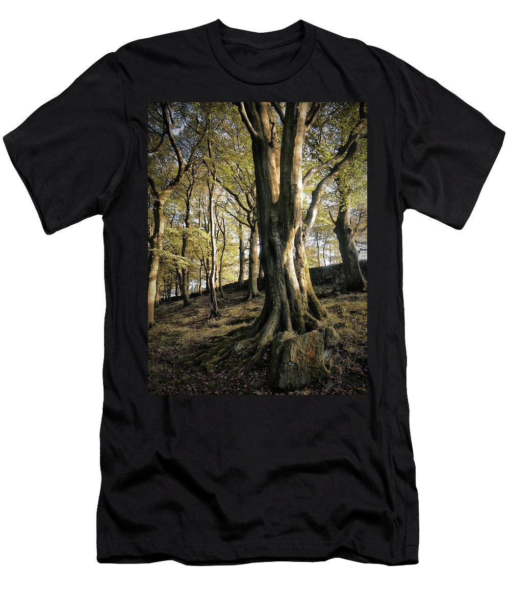 Tree Men's T-Shirt (Athletic Fit) featuring the photograph Hillside Trees by Philip Openshaw