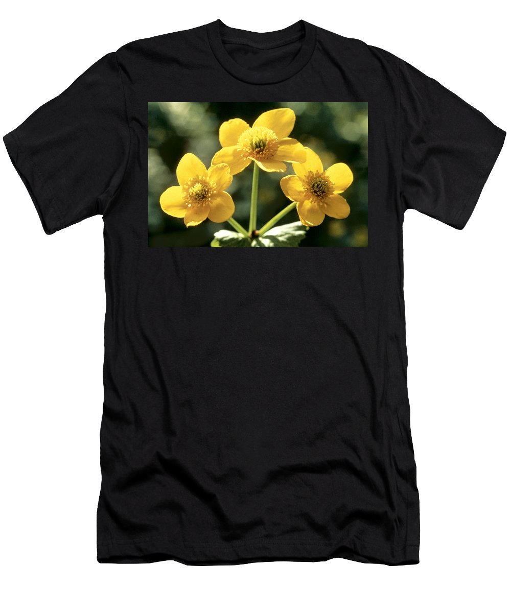 Flower Men's T-Shirt (Athletic Fit) featuring the photograph Himalayan Marsh Marigold by American School