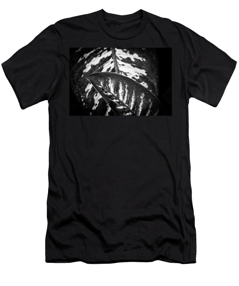 Leaves Men's T-Shirt (Athletic Fit) featuring the photograph Hoja De La Suerte by Totto Ponce