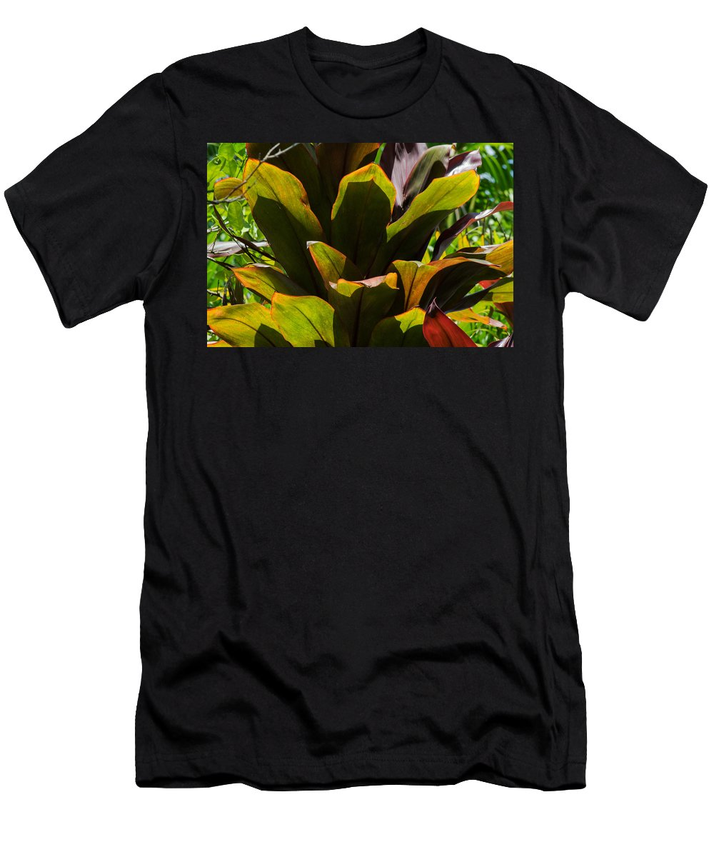 Nature Men's T-Shirt (Athletic Fit) featuring the photograph Hojas Verdes Y Rojas by Totto Ponce