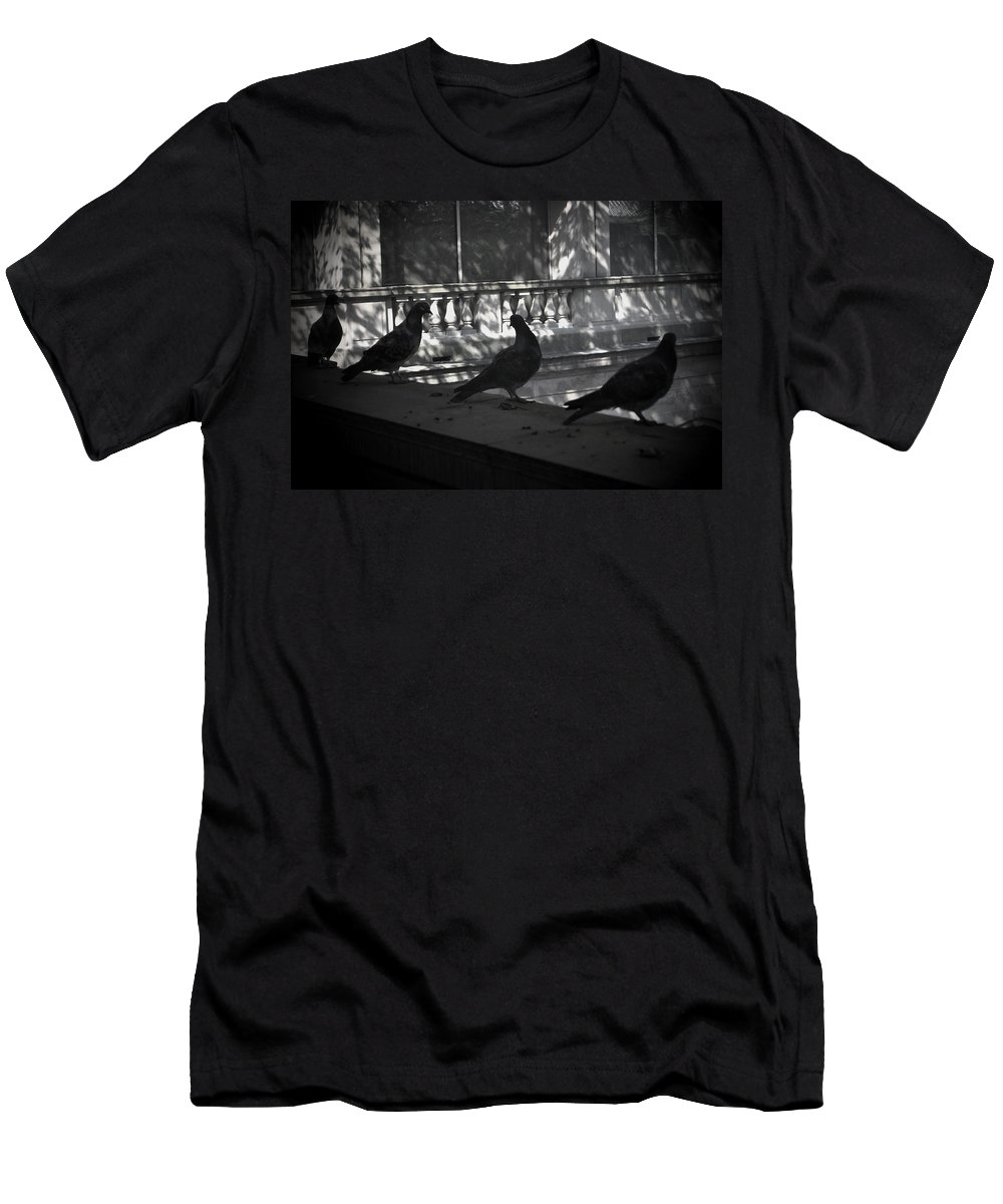 Birds Men's T-Shirt (Athletic Fit) featuring the photograph Holding Court by Tim Nyberg