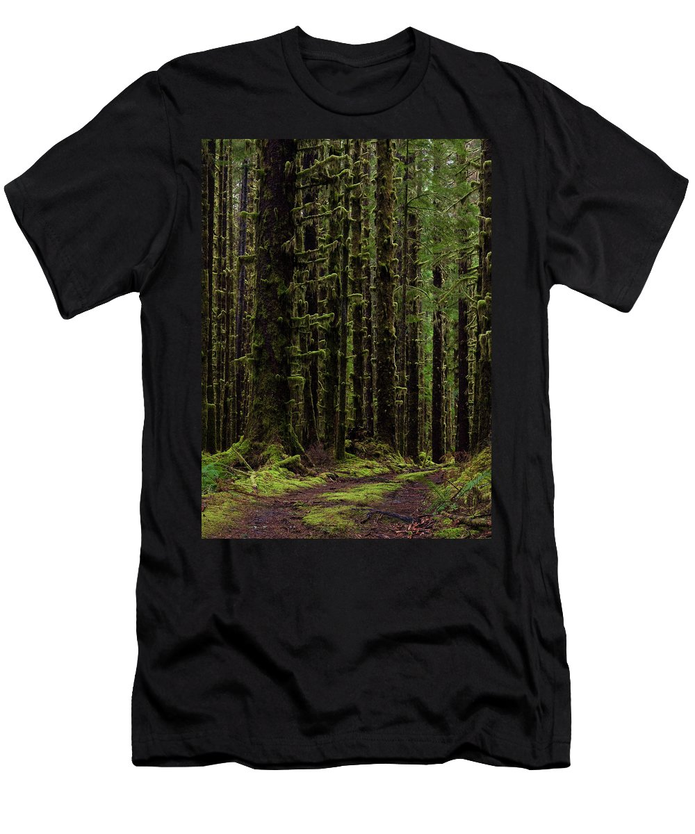 Hoh Men's T-Shirt (Athletic Fit) featuring the photograph Homeward by Mike Reid