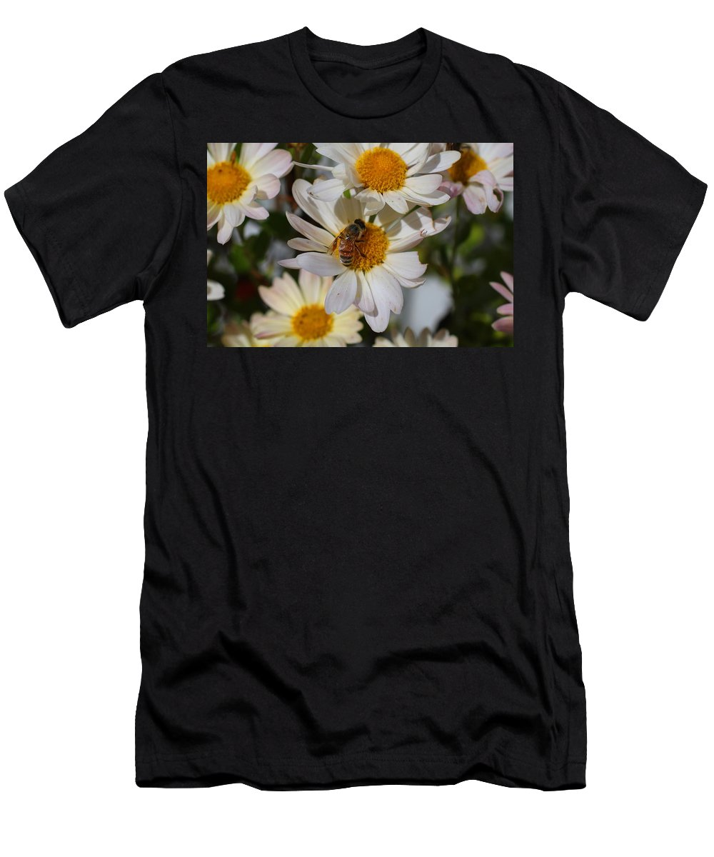 Bee Men's T-Shirt (Athletic Fit) featuring the photograph Honeybee And Daisy Mums by Kathryn Meyer
