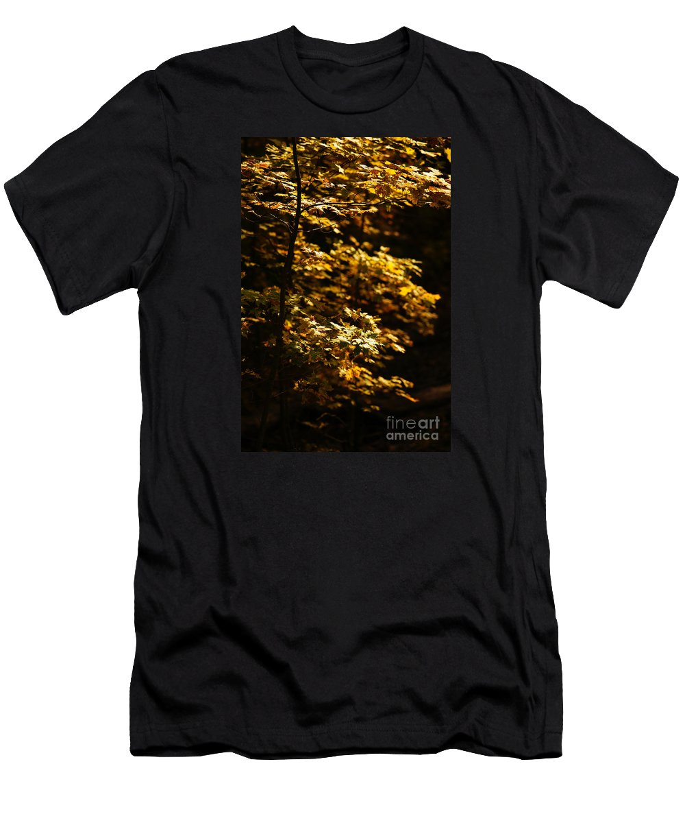 Autumn Men's T-Shirt (Athletic Fit) featuring the photograph Hope Leaves by Linda Shafer