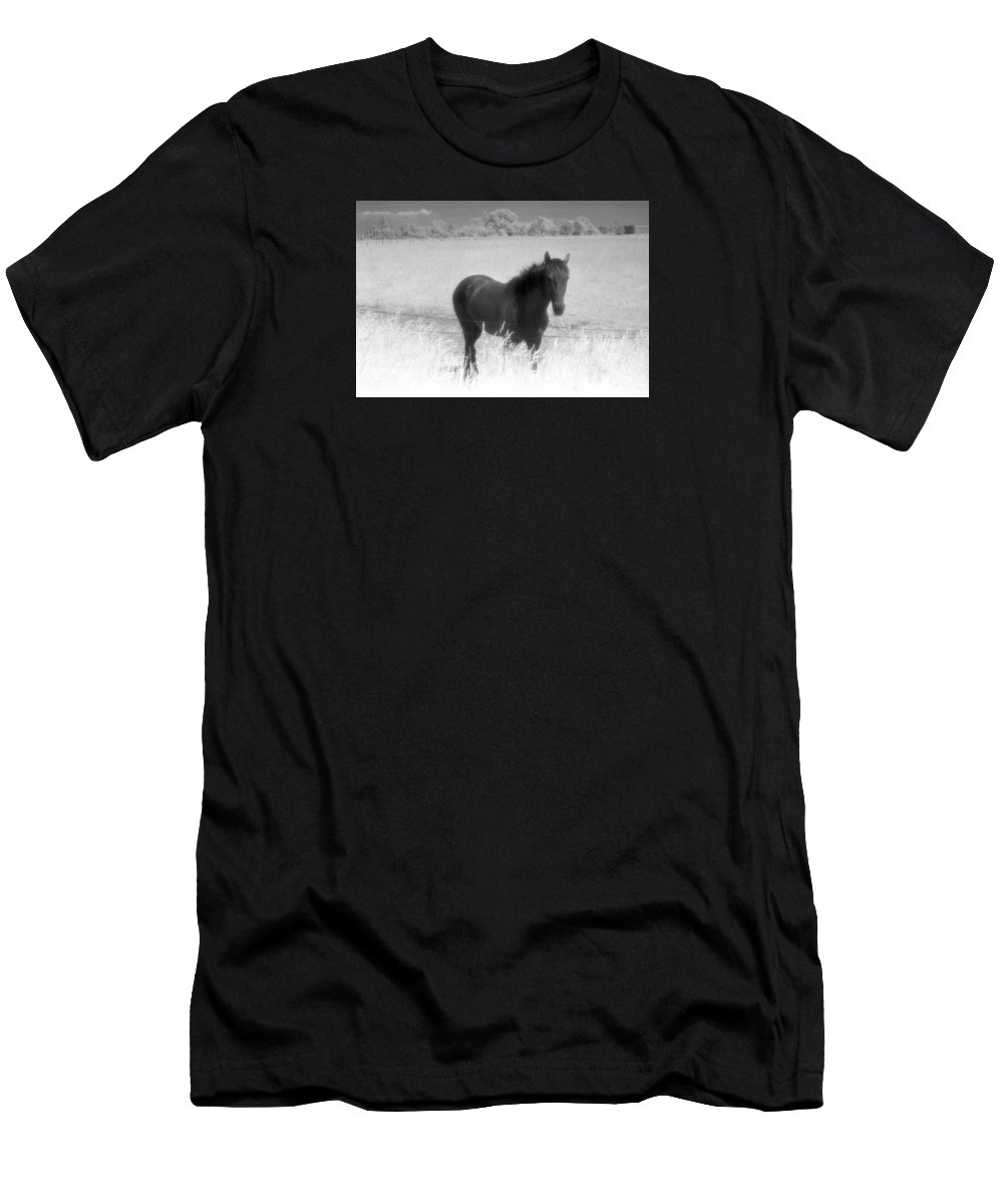 Horse Men's T-Shirt (Athletic Fit) featuring the photograph Horse In A Summer Dreamfield by Lyle Crump