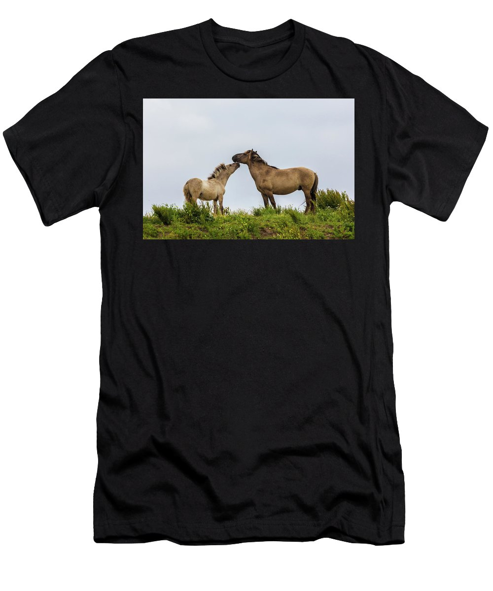Dutch Men's T-Shirt (Athletic Fit) featuring the photograph Horse Love by Andrew Balcombe