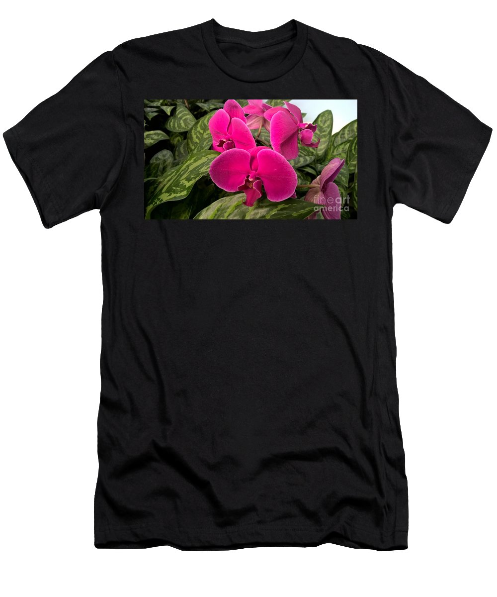 Hot Pink Orchids Men's T-Shirt (Athletic Fit) featuring the photograph Hot Pink Orchids by Janet Deskins