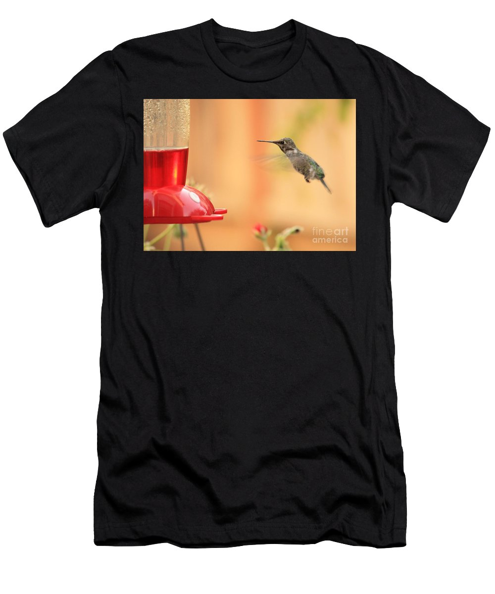 Hummingbird Men's T-Shirt (Athletic Fit) featuring the photograph Hummingbird And Feeder by Carol Groenen
