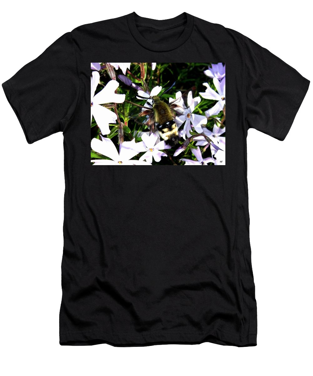 Hummingbird Moth Men's T-Shirt (Athletic Fit) featuring the photograph Hummingbird Moth by Will Borden
