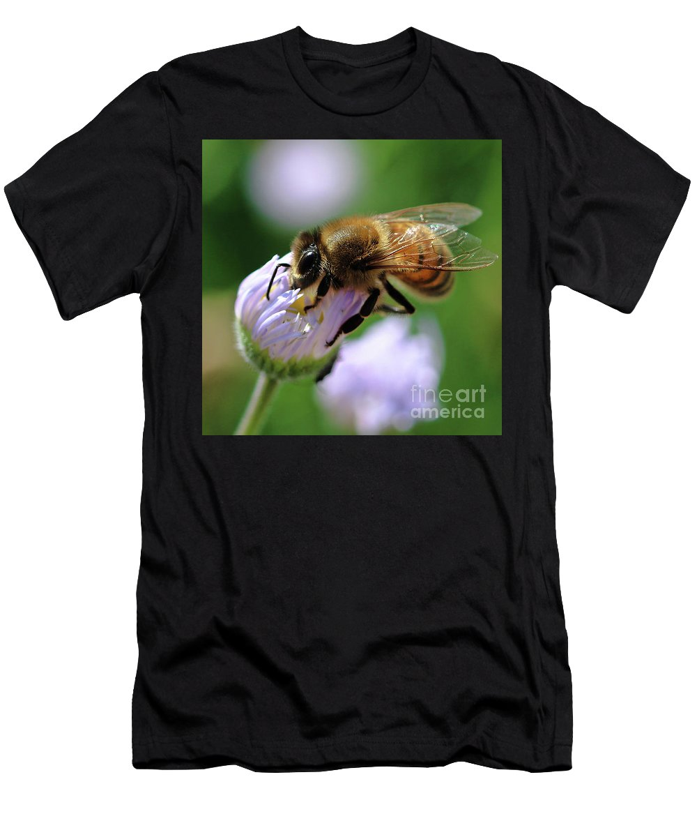 Bee Men's T-Shirt (Athletic Fit) featuring the photograph Hungry Bee by Amber D Hathaway Photography