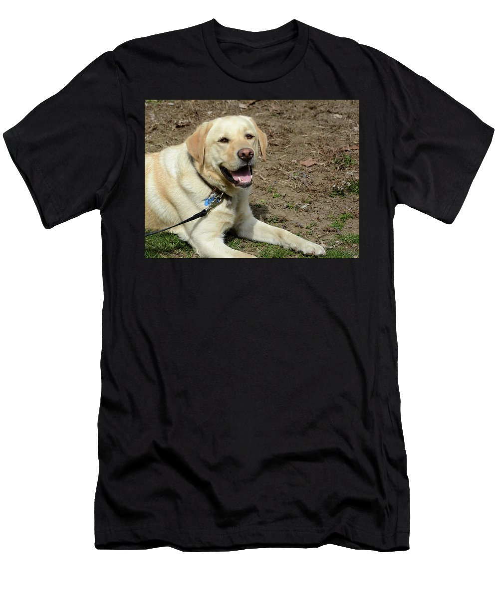 Dog Men's T-Shirt (Athletic Fit) featuring the photograph I Am Waiting For My Master by Alex Galkin
