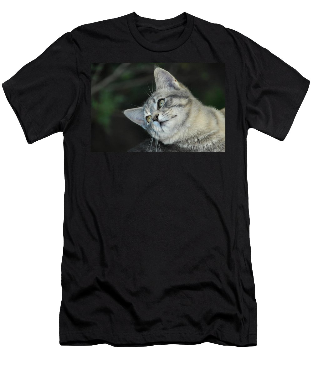 Cat Men's T-Shirt (Athletic Fit) featuring the photograph I Know I'm Cute by Donna Blackhall