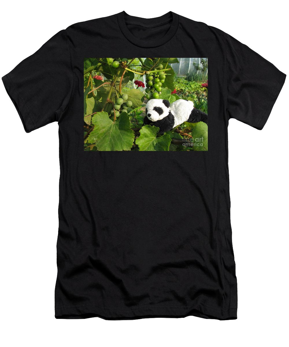 Baby Panda Men's T-Shirt (Athletic Fit) featuring the photograph I Love Grapes Says The Panda by Ausra Huntington nee Paulauskaite