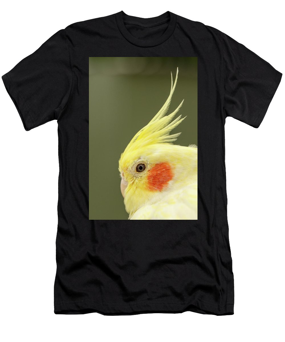 Yellow Budgies Men's T-Shirt (Athletic Fit) featuring the photograph I See You by Maria Ollman