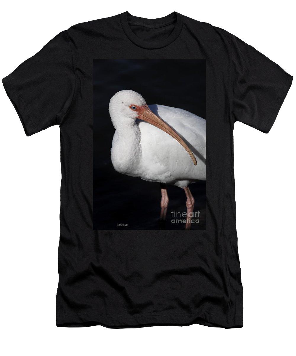 Ibis Men's T-Shirt (Athletic Fit) featuring the photograph Ibis Pose by Deborah Benoit