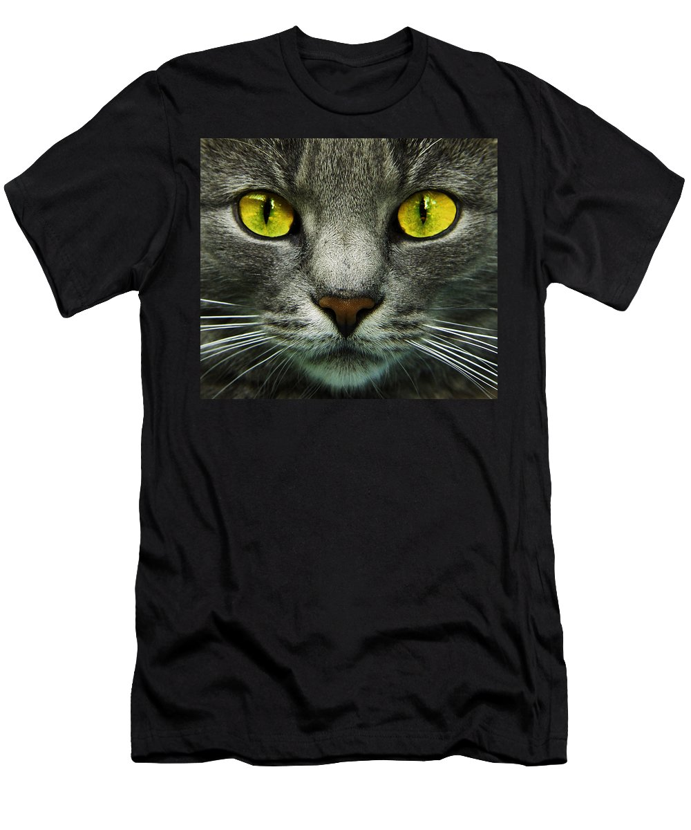 Cats Men's T-Shirt (Athletic Fit) featuring the photograph I.c.u. by Joachim G Pinkawa