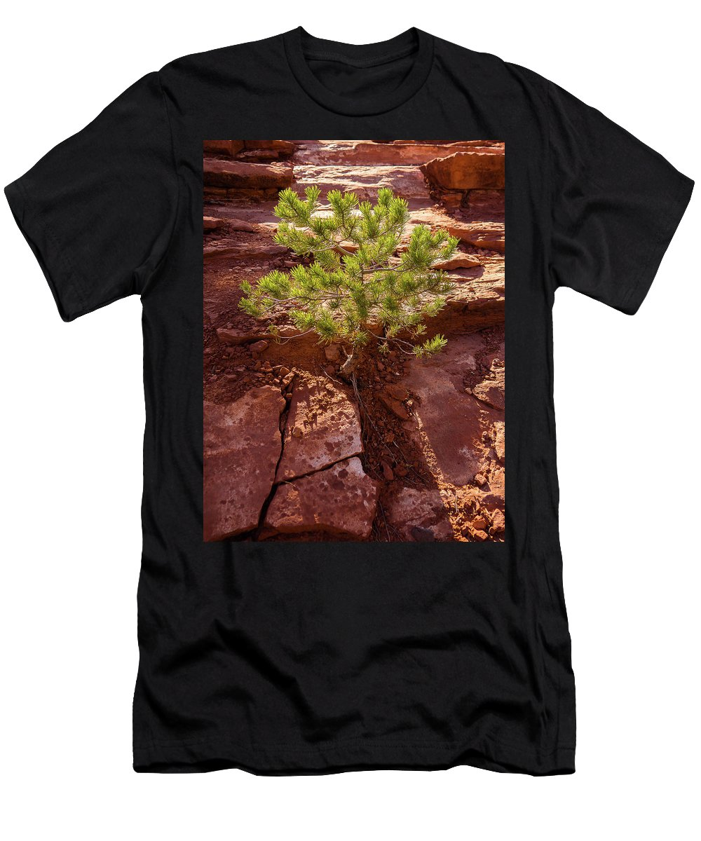 Bush Men's T-Shirt (Athletic Fit) featuring the photograph Illumination by Jessica Giannone