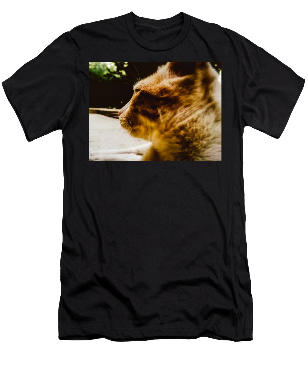 Cat Animal Nature Men's T-Shirt (Athletic Fit) featuring the pyrography I'm The Lion by Eliass Lavey