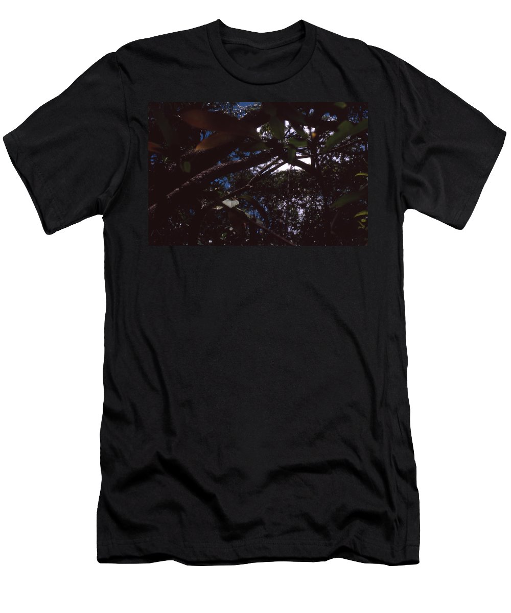 Bahia Men's T-Shirt (Athletic Fit) featuring the photograph In A Brazilian Forest by Patrick Klauss