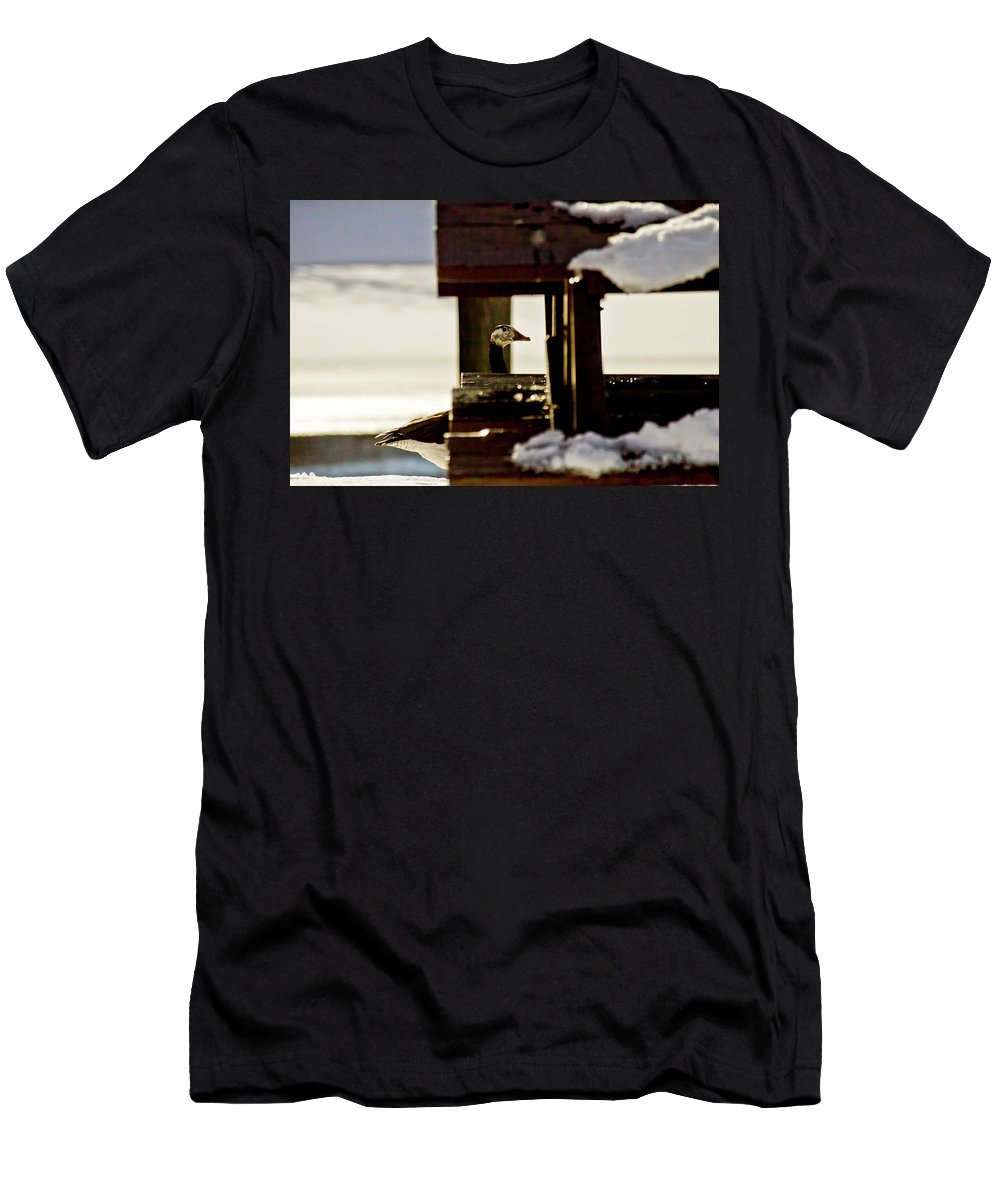Goose Men's T-Shirt (Athletic Fit) featuring the photograph In Plain Sight by Albert Seger