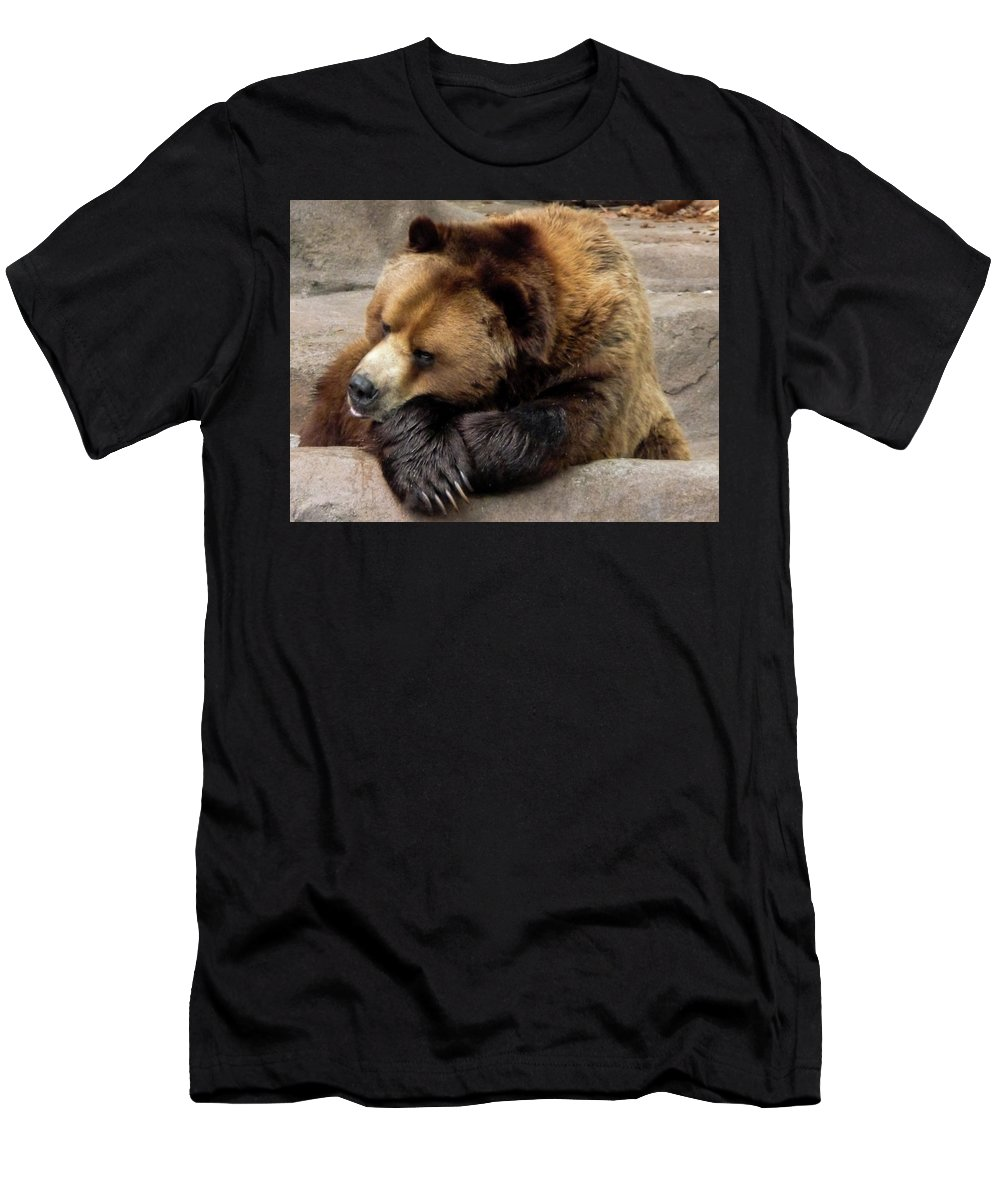 Repose Men's T-Shirt (Athletic Fit) featuring the photograph In Repose by Vm Vassolo