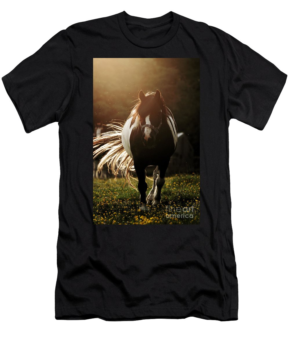 Horse Men's T-Shirt (Athletic Fit) featuring the photograph In The Last Rays Of Setting Sun by Angel Tarantella