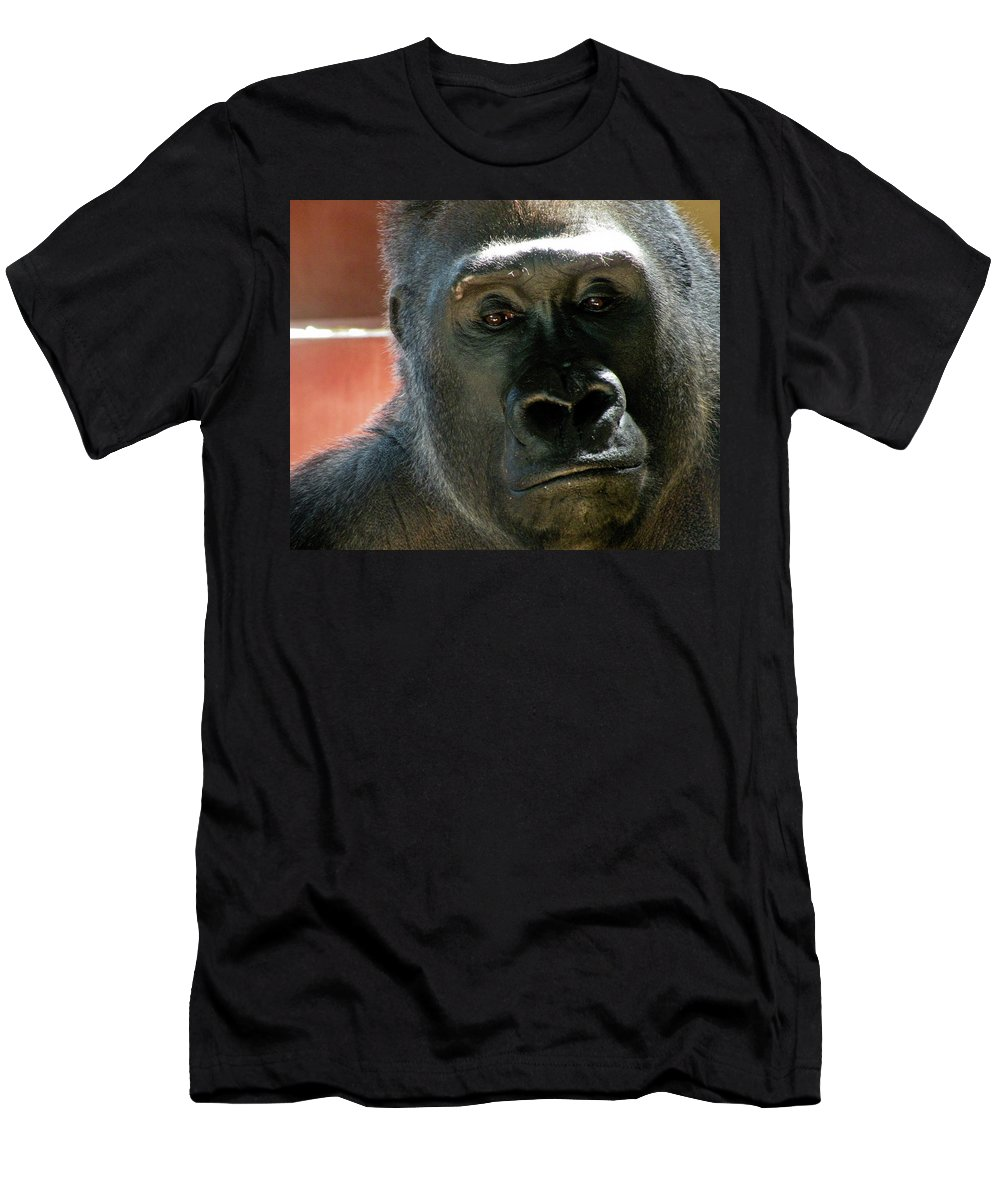 Gorilla Men's T-Shirt (Athletic Fit) featuring the photograph Innocent by Trish Tritz