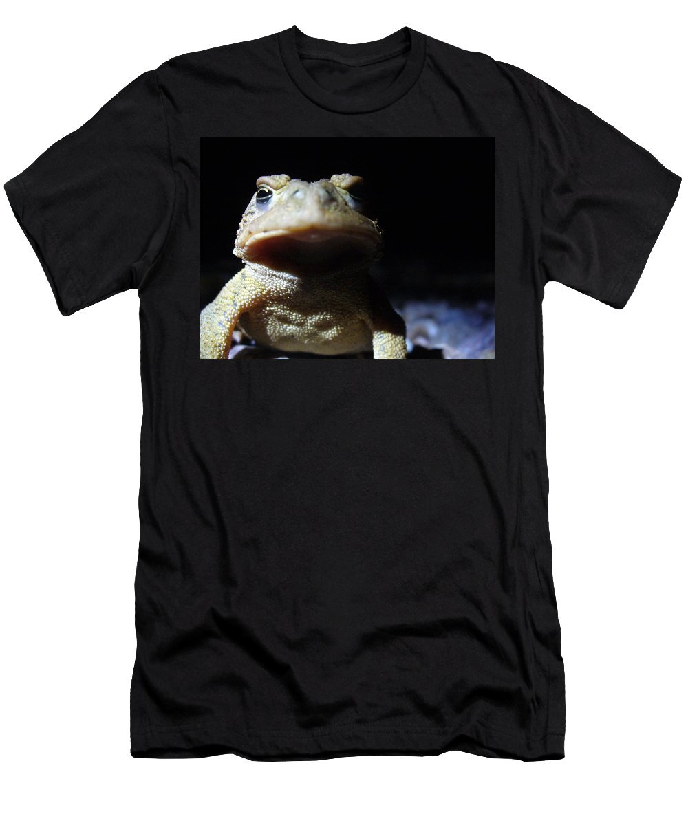 Toad Men's T-Shirt (Athletic Fit) featuring the photograph Interrogation Of A Toad by Stefanie Beauregard