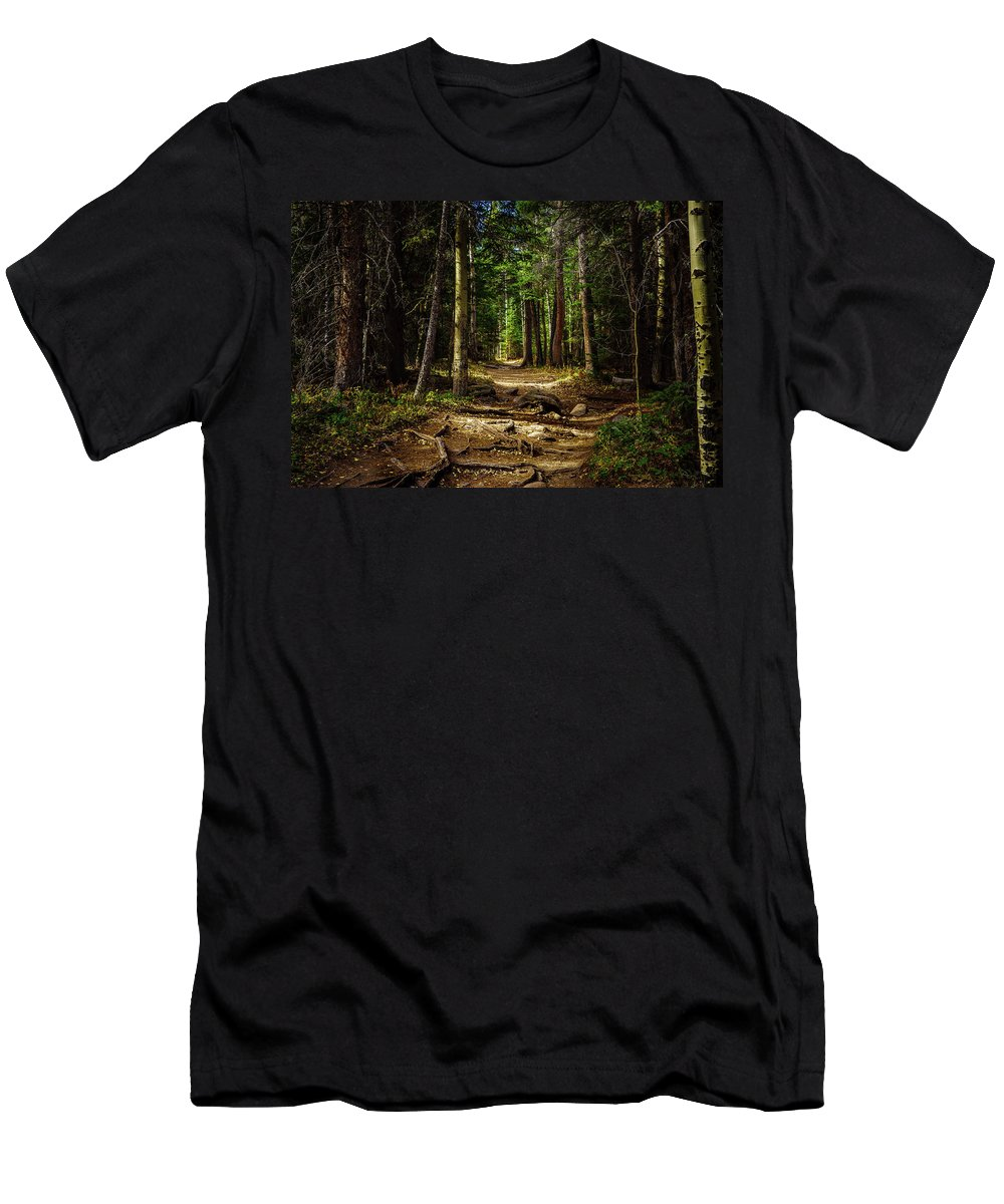 Forest Men's T-Shirt (Athletic Fit) featuring the photograph Into The Woods by Bruce Tracy