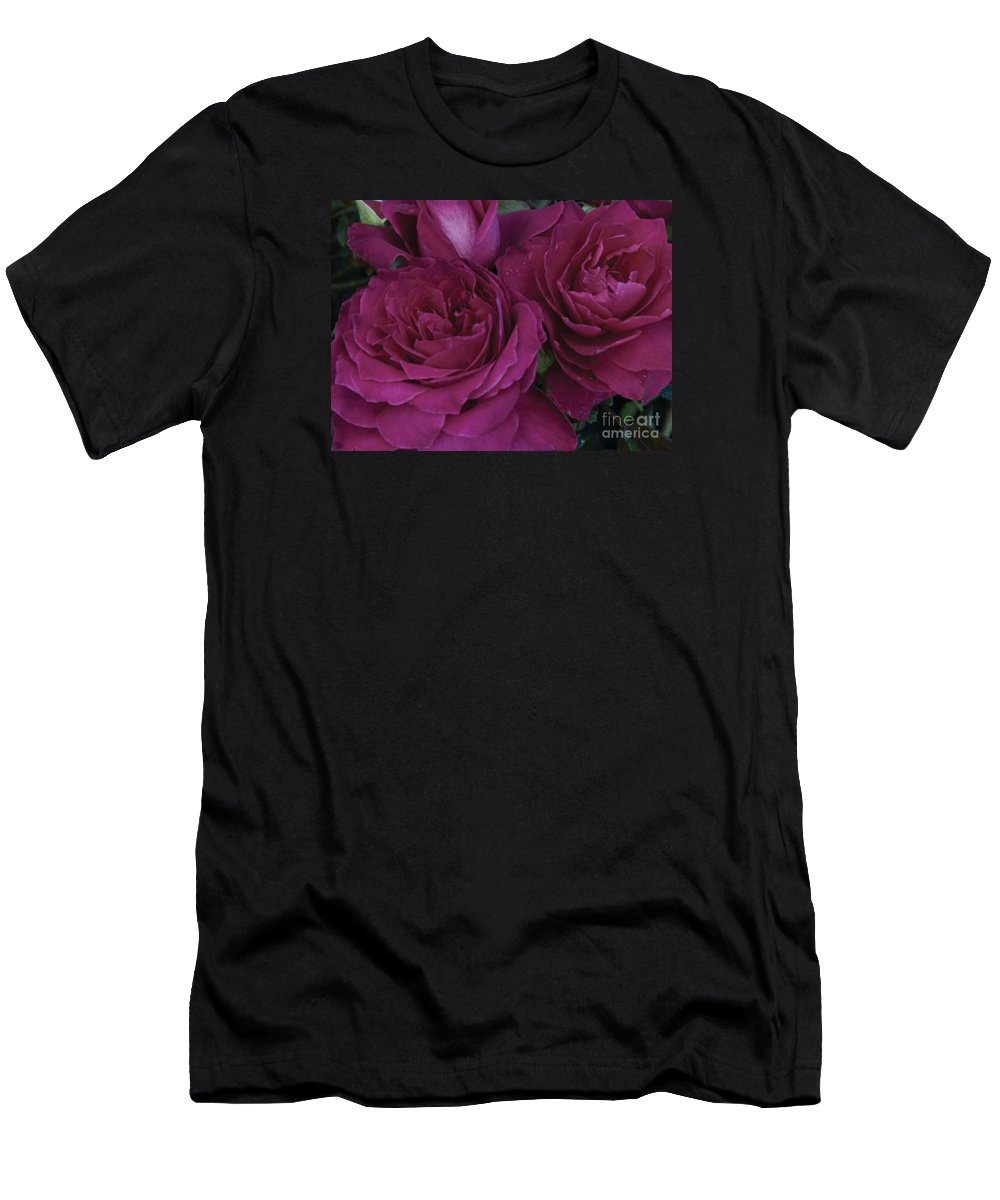 Intrigue Men's T-Shirt (Athletic Fit) featuring the photograph Intrigue Rose by Marta Robin Gaughen