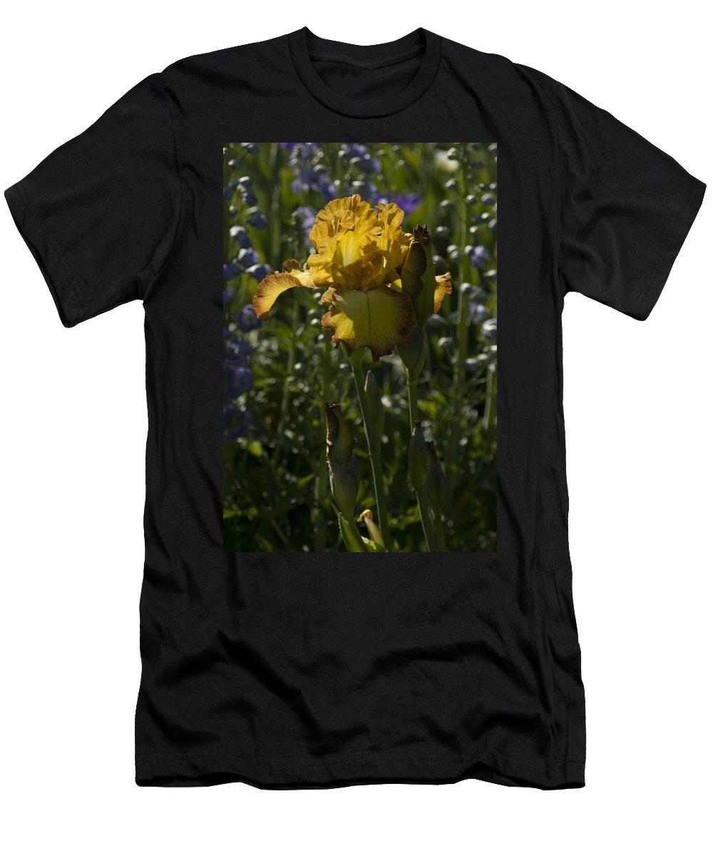 Iris Men's T-Shirt (Athletic Fit) featuring the photograph Iris 6 by Sara Stevenson