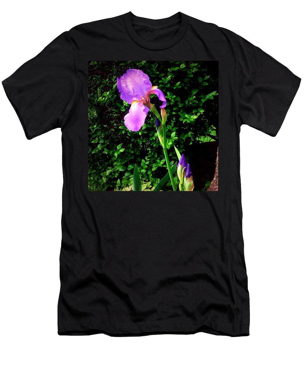 Iris Men's T-Shirt (Athletic Fit) featuring the photograph Iris In Sunshine by Debra Lynch