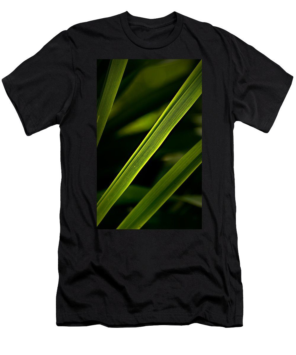 Garden Men's T-Shirt (Athletic Fit) featuring the photograph Iris Leaves by Onyonet Photo Studios