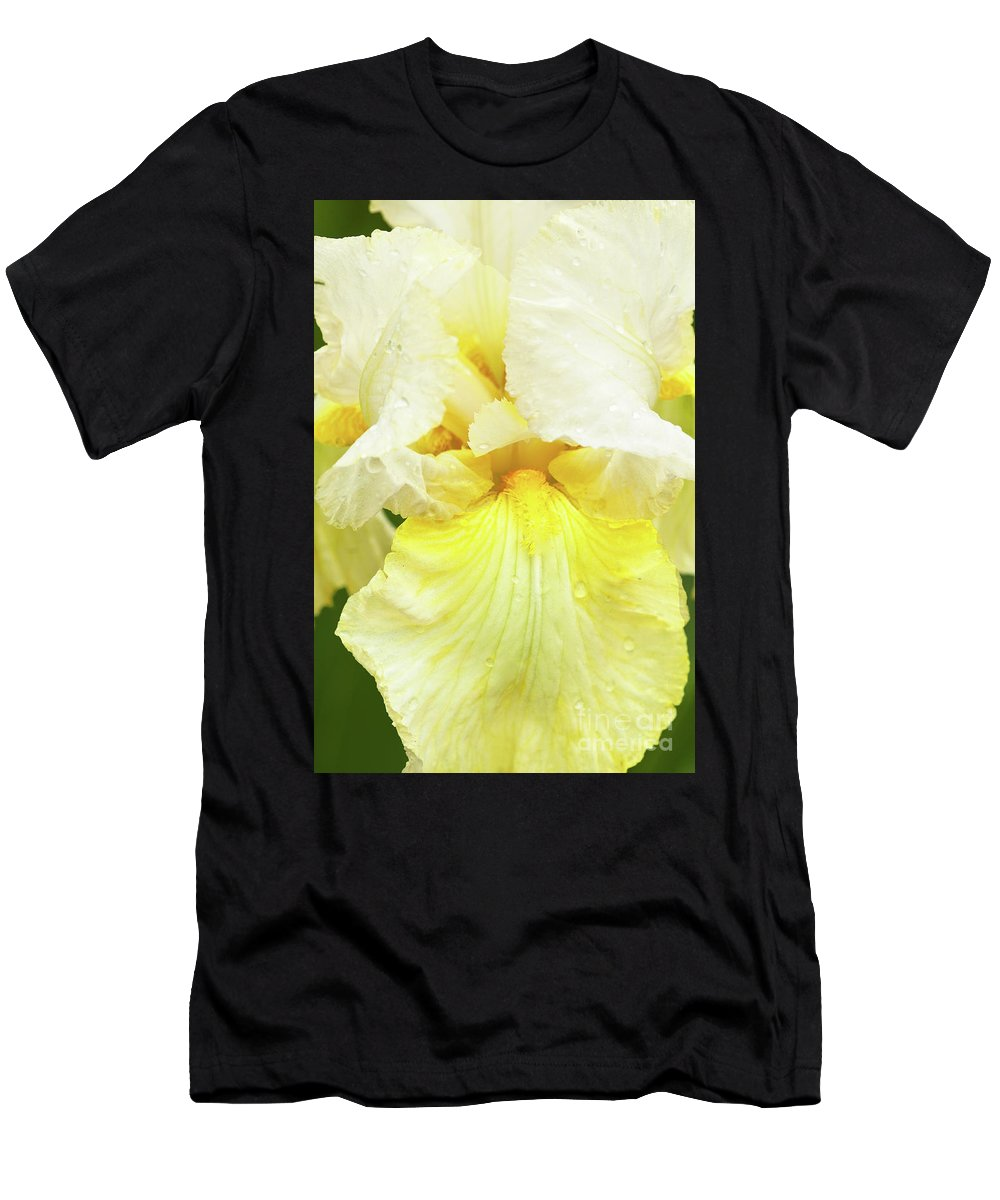 Iris Pride Of Ireland Men's T-Shirt (Athletic Fit) featuring the photograph Iris Pride Of Ireland by Regina Geoghan