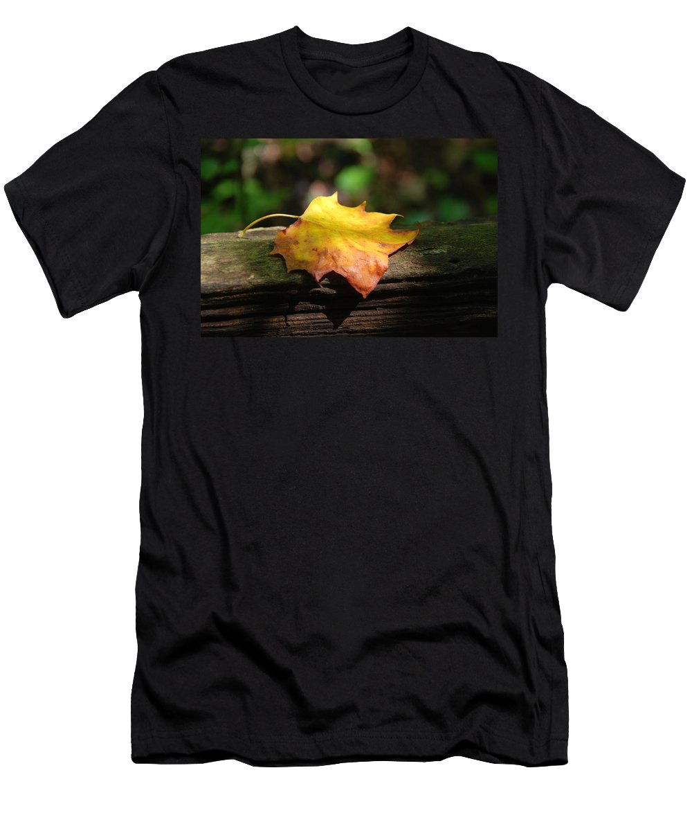 Photography Men's T-Shirt (Athletic Fit) featuring the photograph Its Fall by Susanne Van Hulst