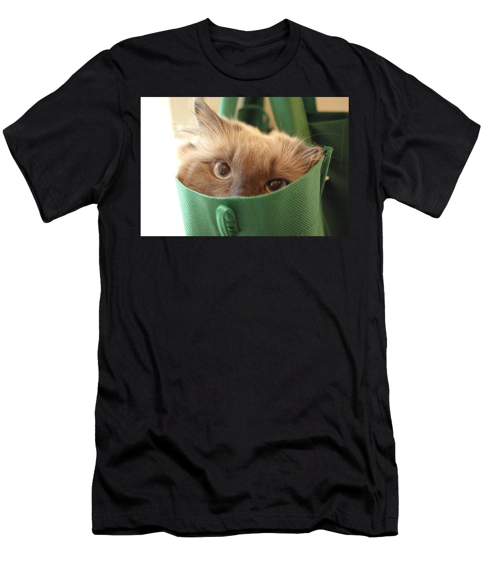 Cat Men's T-Shirt (Athletic Fit) featuring the photograph Jack In The Bag by Cindy Johnston