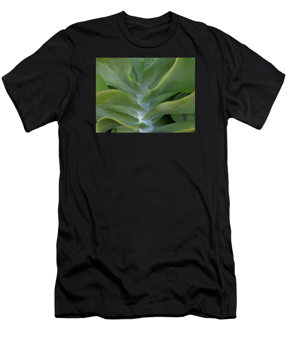 Succulent Men's T-Shirt (Athletic Fit) featuring the photograph Jade by Erin O'Neal-Morie