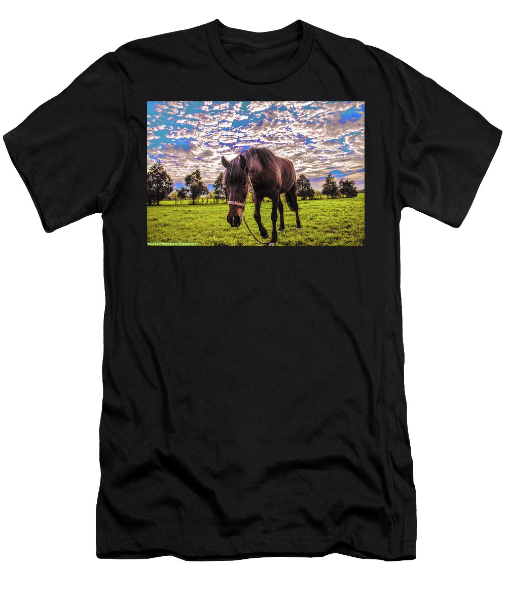 Horses Men's T-Shirt (Athletic Fit) featuring the photograph Jubilee by Chad Fuller