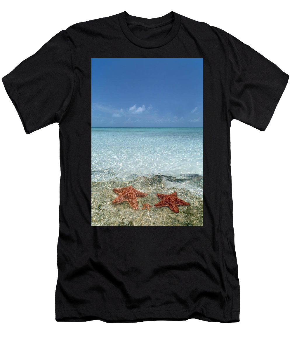 Starfish Men's T-Shirt (Athletic Fit) featuring the photograph Just Between Us by Betsy Knapp