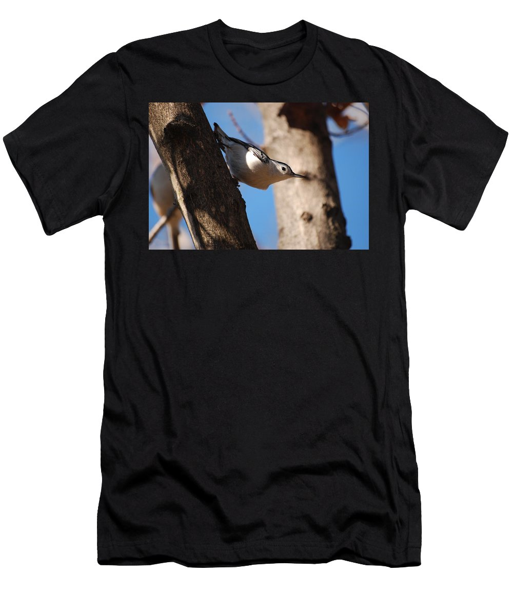 Woodpecker Men's T-Shirt (Athletic Fit) featuring the photograph Just Looking by Lori Tambakis