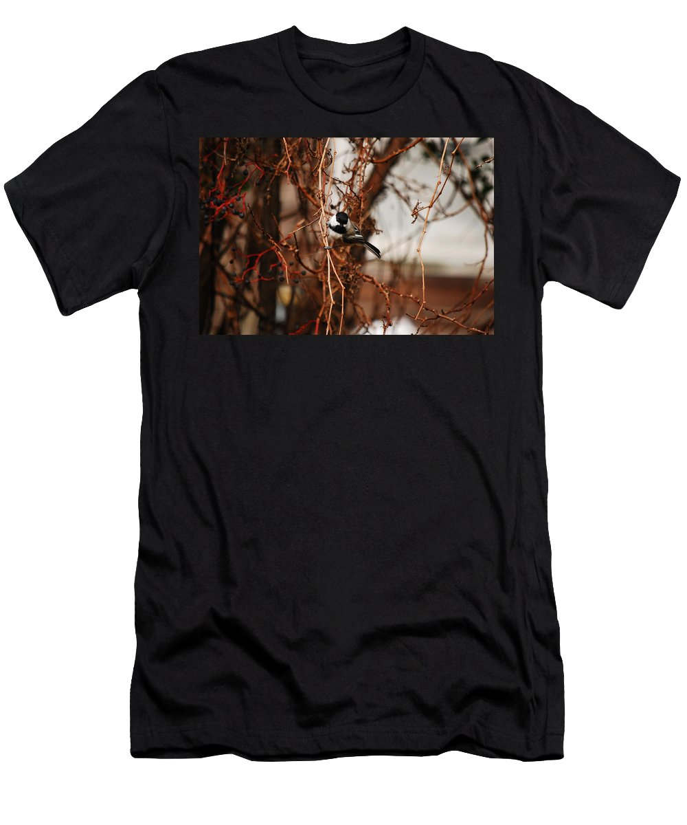 Chickadee Men's T-Shirt (Athletic Fit) featuring the photograph Just Waiting by Lori Tambakis