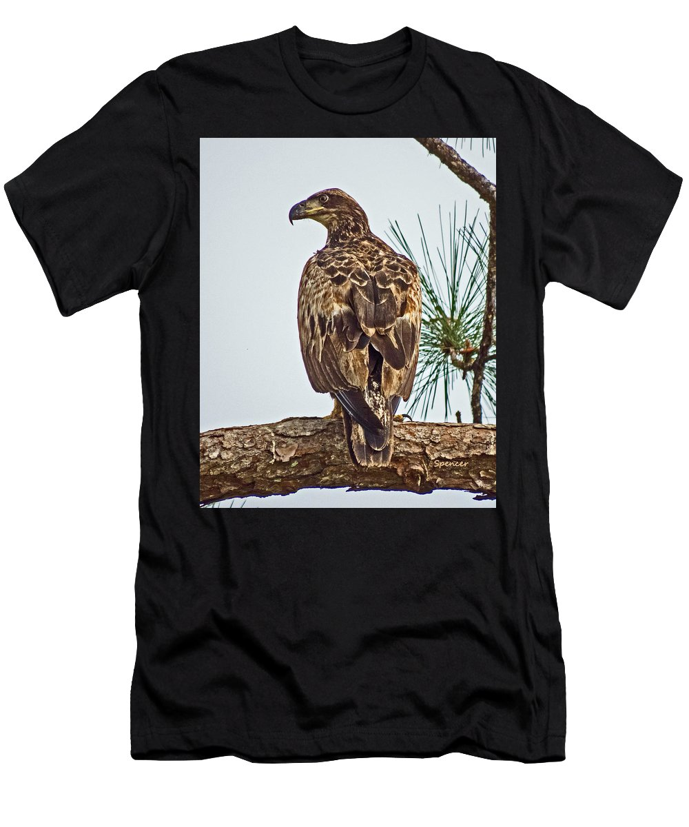 Bird Men's T-Shirt (Athletic Fit) featuring the photograph Juvenile by T Guy Spencer