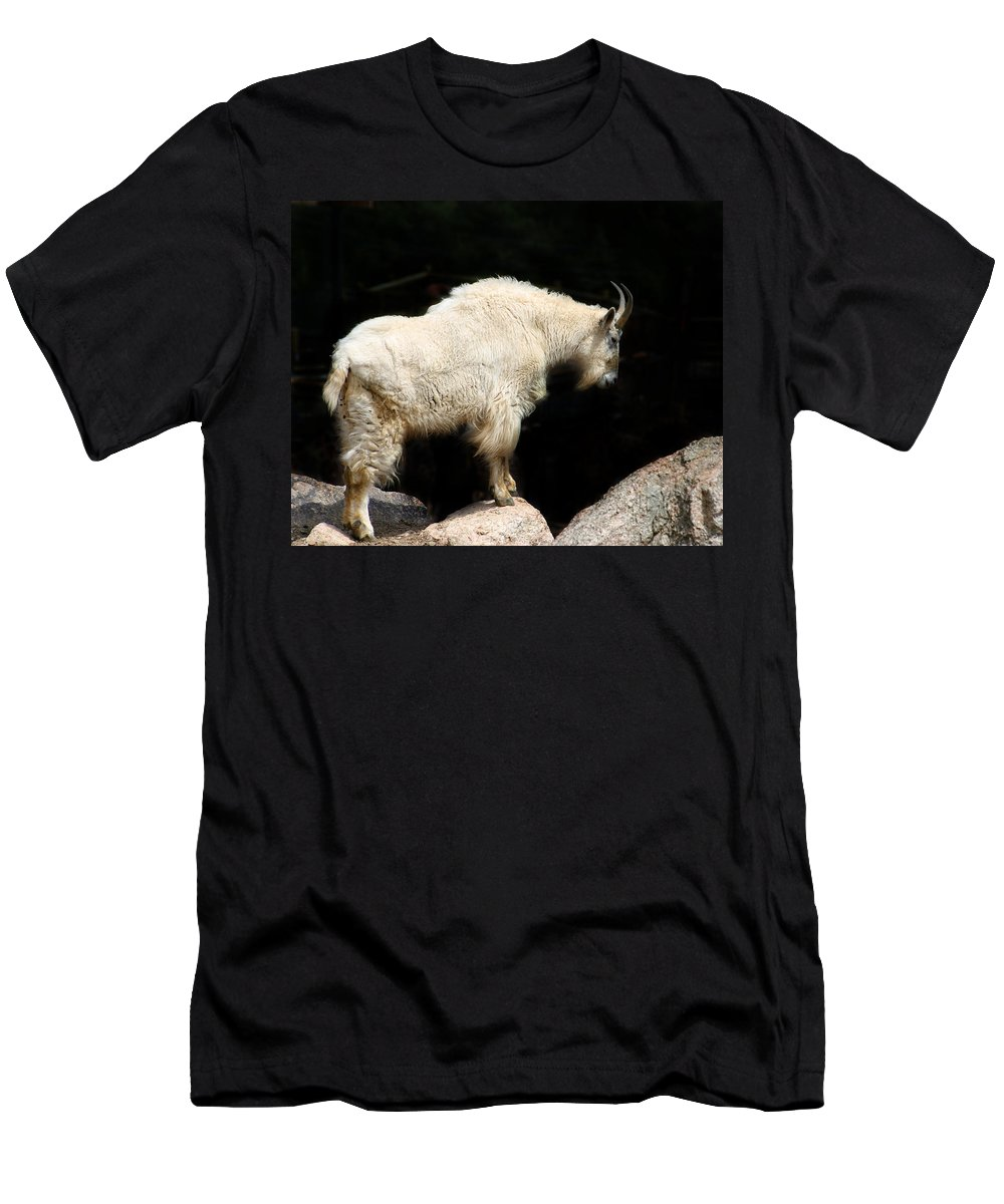 Wildlife Men's T-Shirt (Athletic Fit) featuring the photograph King Of The Mountain by Anthony Jones