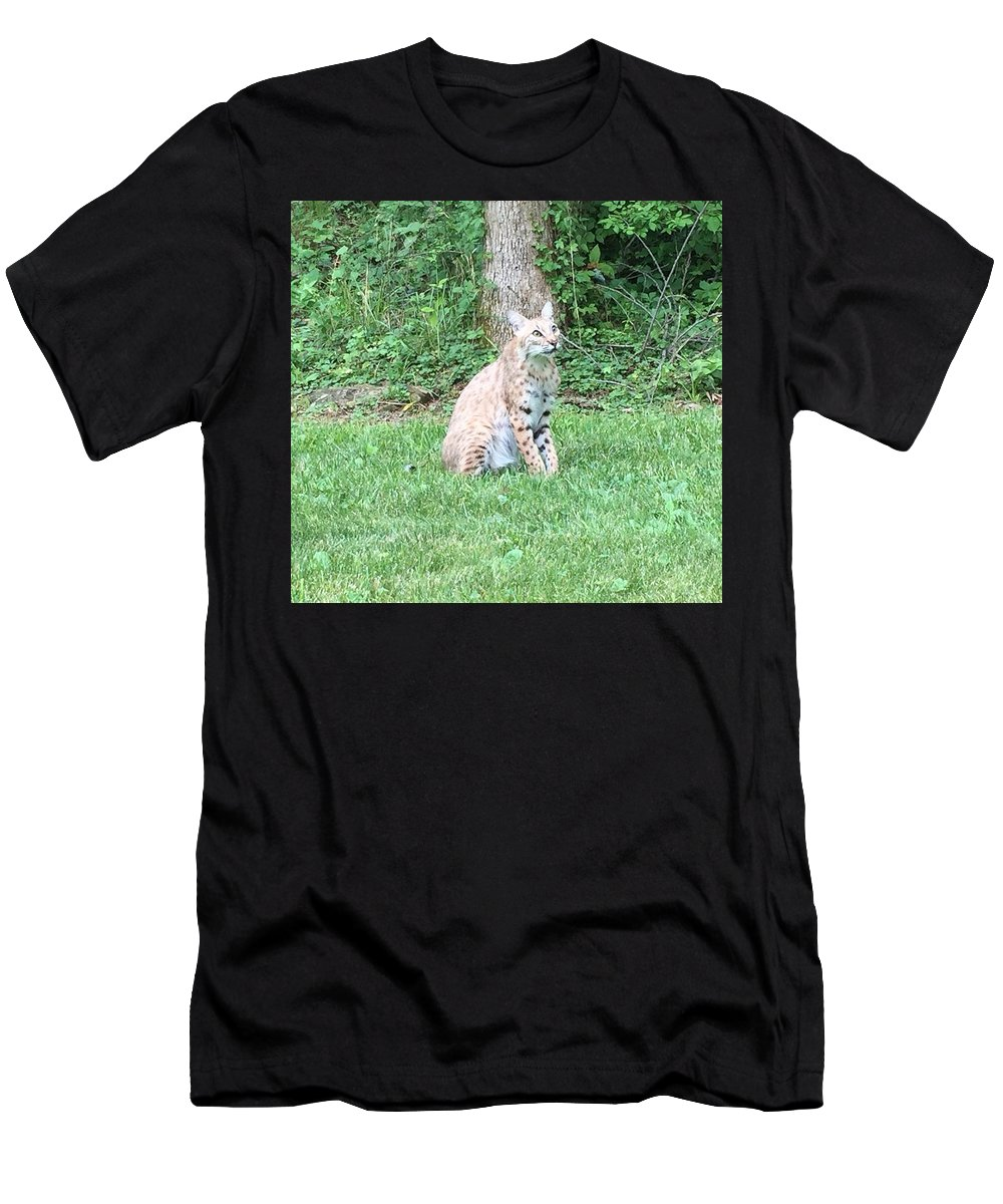 Bobcat Photo Men's T-Shirt (Athletic Fit) featuring the photograph Ks Bobcat by Scott Almsberger