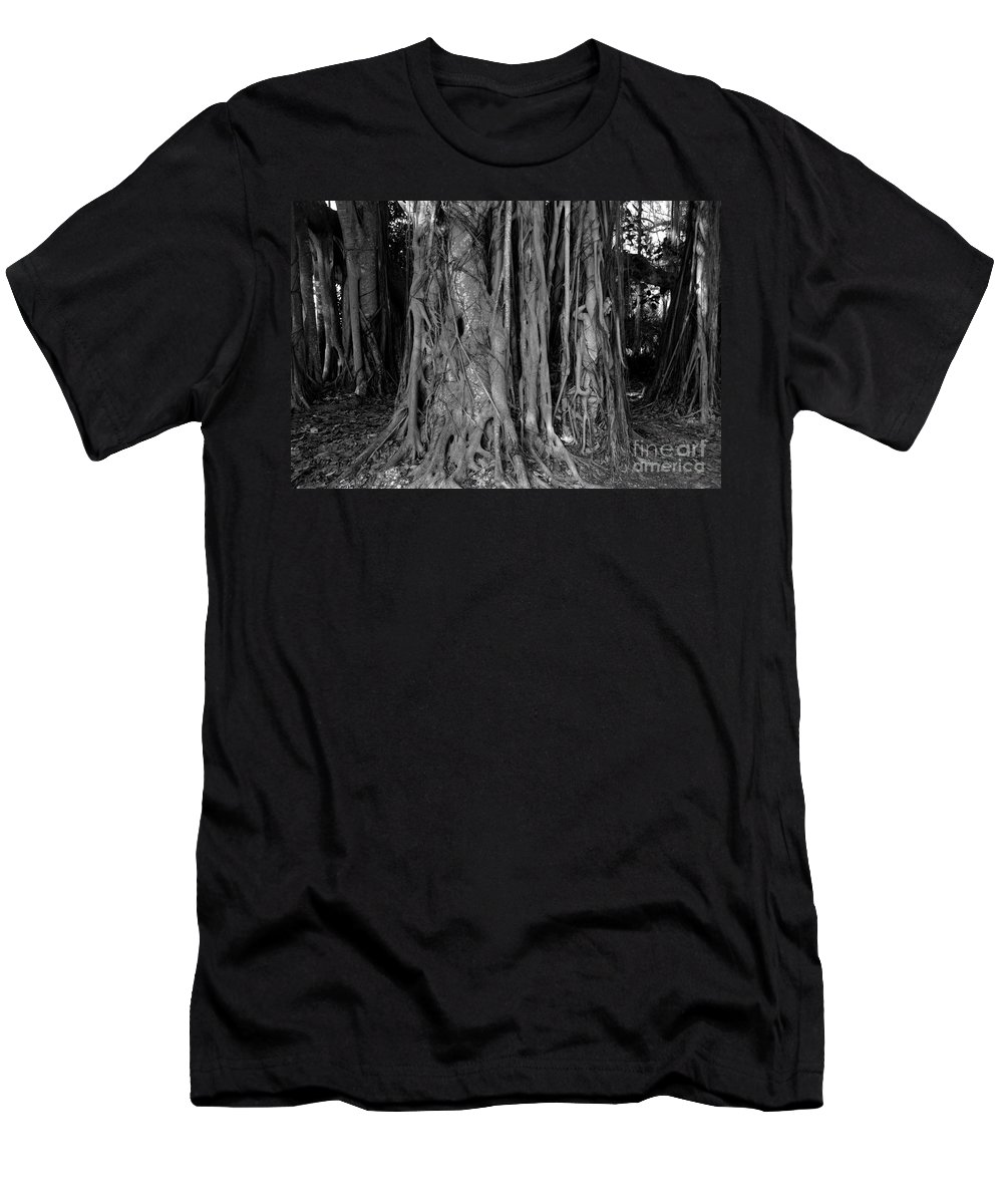 Banyan Trees Men's T-Shirt (Athletic Fit) featuring the photograph Lady In The Banyans by David Lee Thompson