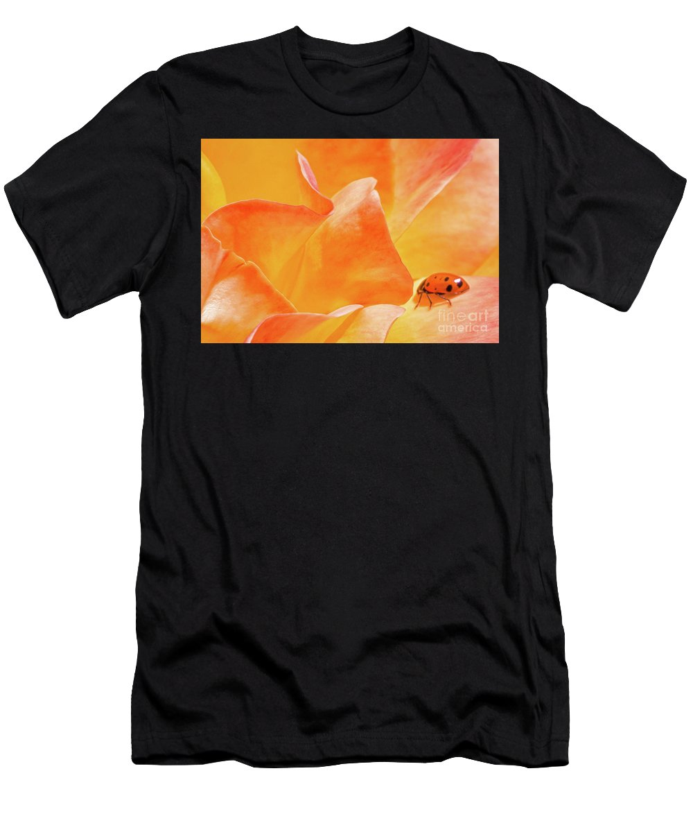 Rose Men's T-Shirt (Athletic Fit) featuring the photograph Ladybug Alights by Diana Weir