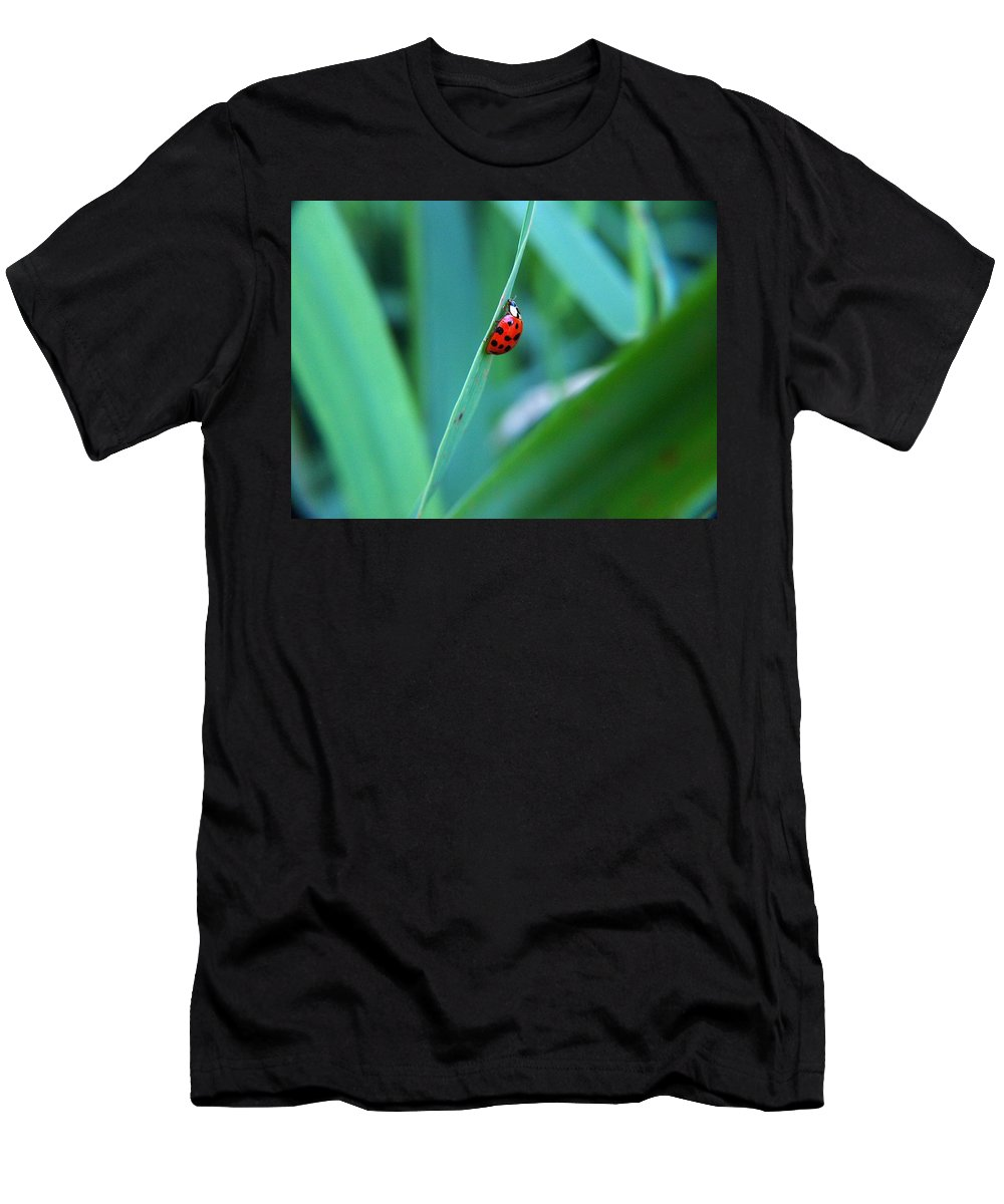 Digital Art Men's T-Shirt (Athletic Fit) featuring the photograph Ladybug by Belinda Cox