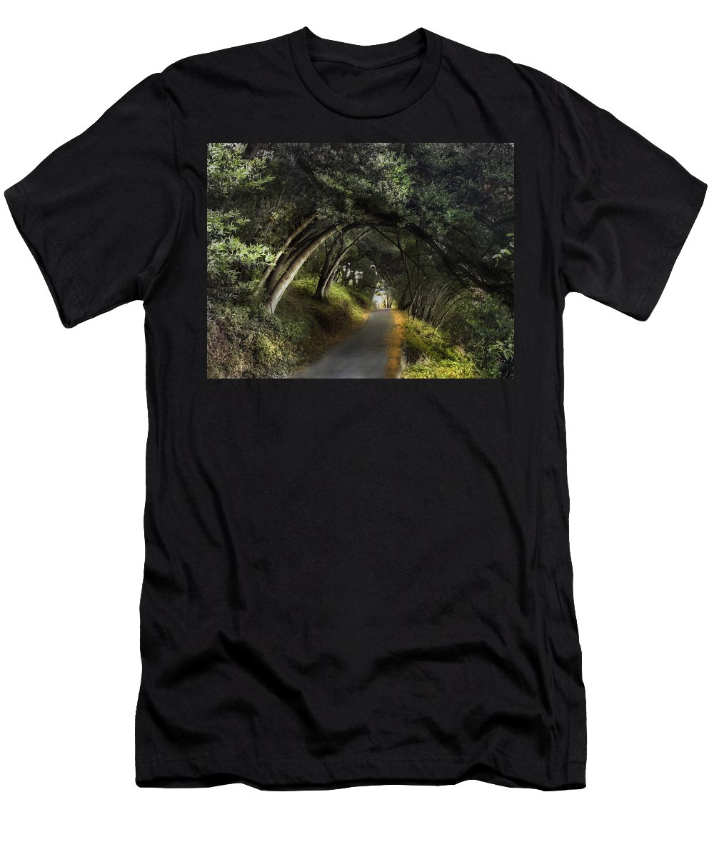 Landscapes Men's T-Shirt (Athletic Fit) featuring the photograph Lake Chabot by Karen W Meyer
