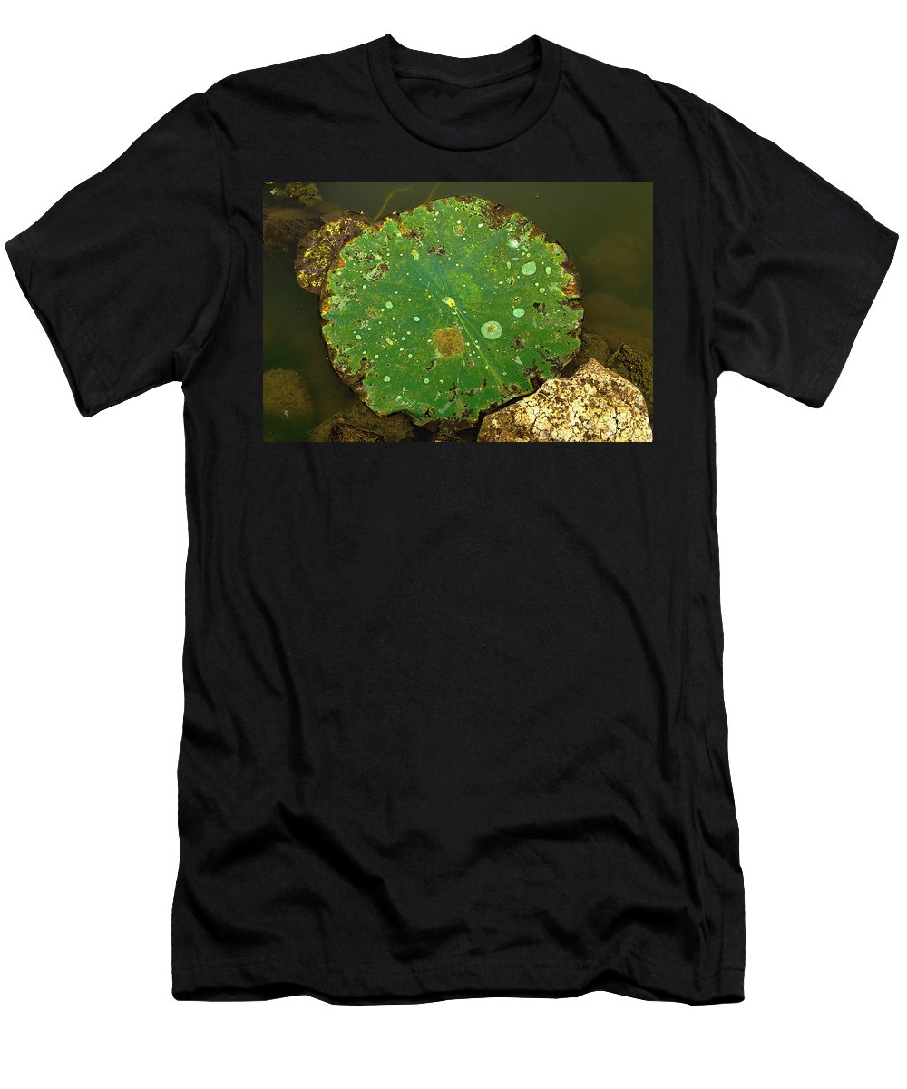 Lily Pad Men's T-Shirt (Athletic Fit) featuring the photograph Lake Mermet Lily Pad by Jeff Kurtz